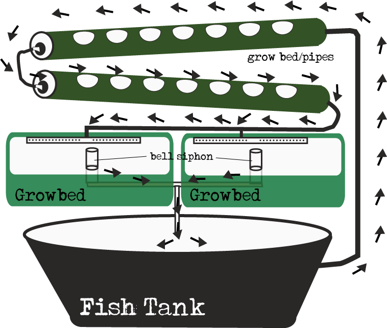 ebb and flow gravity feed aquaponic diagram